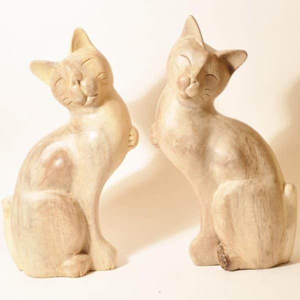 пара котиков